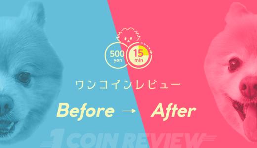 ワンコインレビュー Before→After #001